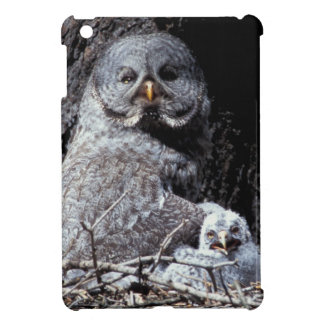NA, USA, Idaho, Teton Valley. Great gray owl Case For The iPad Mini