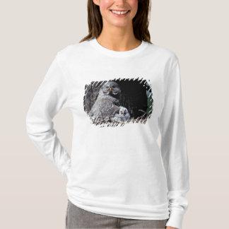 NA, USA, Idaho, Teton Valley. Great gray owl T-Shirt
