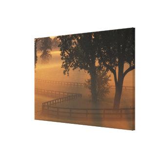 NA, USA, Kentucky. Foggy sunrise on Kentucky Gallery Wrap Canvas