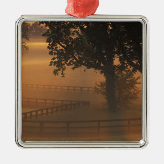 NA, USA, Kentucky. Foggy sunrise on Kentucky Christmas Ornament