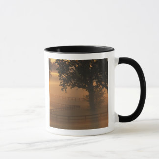 NA, USA, Kentucky. Foggy sunrise on Kentucky Mug