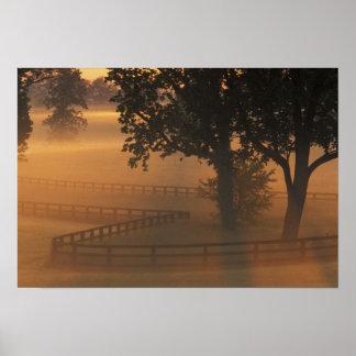 NA, USA, Kentucky. Foggy sunrise on Kentucky Poster