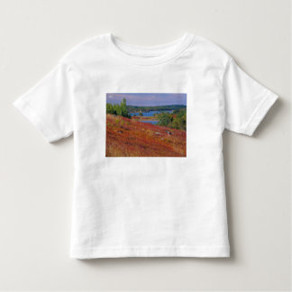 NA, USA, Maine. Blueberry Barrens. Toddler T-Shirt