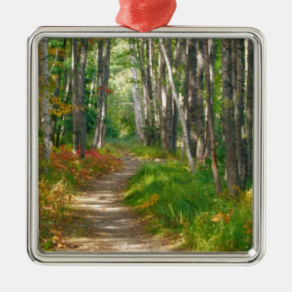 NA, USA, Maine.  Jessup trail in Acadia National Christmas Ornament