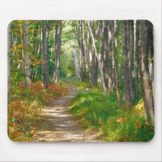 NA, USA, Maine.  Jessup trail in Acadia National Mouse Mat