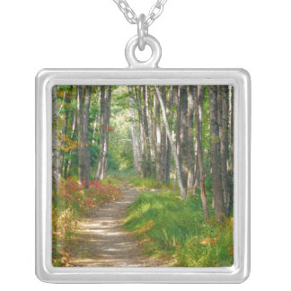 NA, USA, Maine.  Jessup trail in Acadia National Silver Plated Necklace