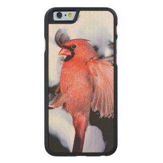 NA, USA, Minnesota, Mendota Heights. Female Carved Maple iPhone 6 Case