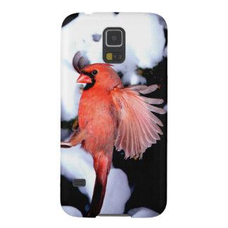 NA, USA, Minnesota, Mendota Heights. Female Galaxy S5 Case