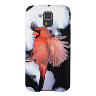 NA, USA, Minnesota, Mendota Heights. Female Galaxy S5 Cover