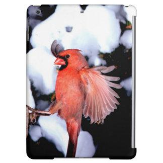 NA, USA, Minnesota, Mendota Heights. Female iPad Air Cover