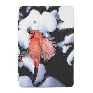 NA, USA, Minnesota, Mendota Heights. Female iPad Mini Cover