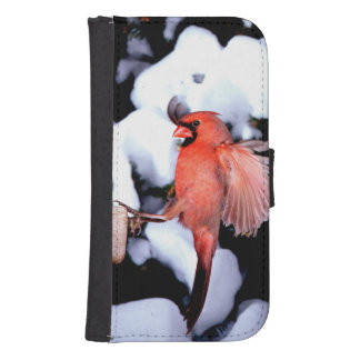 NA, USA, Minnesota, Mendota Heights. Female Samsung S4 Wallet Case