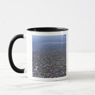 NA, USA, Montana, Glacier NP Rocks in Lake Mug
