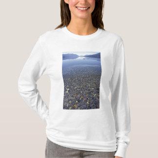 NA, USA, Montana, Glacier NP Rocks in Lake T-Shirt