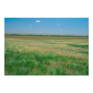 NA, USA, NE. Grasslands near Ogallala with Poster