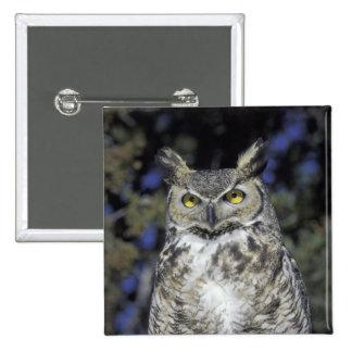 NA, USA, New Mexico, Wildlife West Nature Park 15 Cm Square Badge