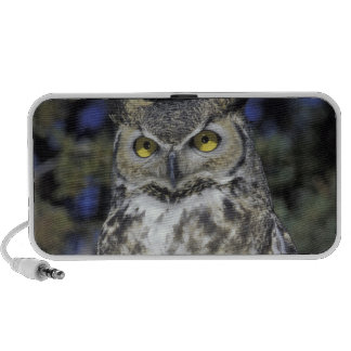 NA, USA, New Mexico, Wildlife West Nature Park iPhone Speaker