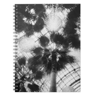 NA, USA, New York, New York City. Palm trees in Notebook