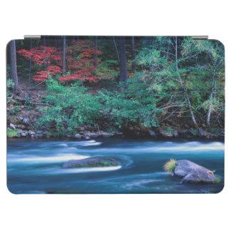 NA, USA, Oregon, Fall Foliage on North Umpquah iPad Air Cover