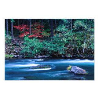 NA, USA, Oregon, Fall Foliage on North Umpquah Photo Print