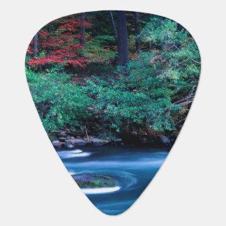 NA, USA, Oregon, Fall Foliage on North Umpquah Plectrum