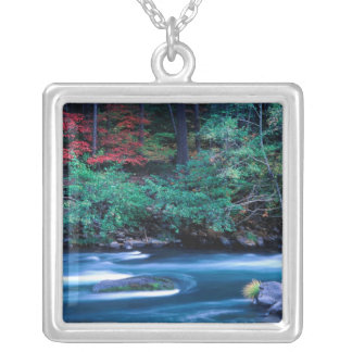 NA, USA, Oregon, Fall Foliage on North Umpquah Silver Plated Necklace