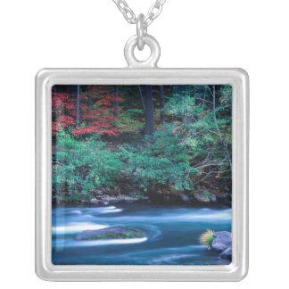 NA, USA, Oregon, Fall Foliage on North Umpquah Silver Plated Necklace