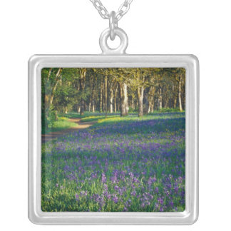 NA, USA, Oregon, Salem. Field of camas and 3 Silver Plated Necklace