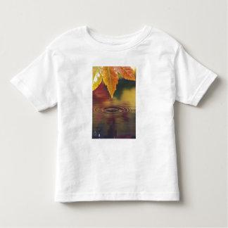 NA, USA, Pacific Northwest T-shirts