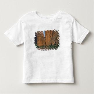 NA, USA, Texas, Big Bend National Park. Rio T-shirt