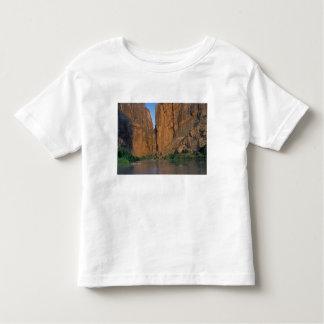 NA, USA, Texas, Big Bend National Park. Rio Toddler T-Shirt
