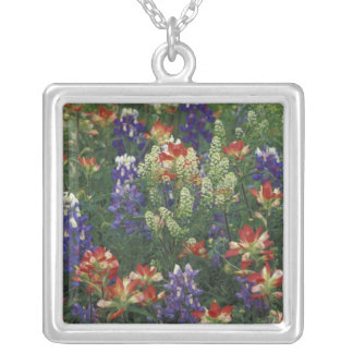 NA, USA, Texas, near Marble Falls, Paint brush Silver Plated Necklace
