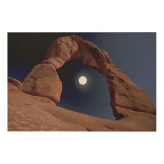 NA, USA, Utah, Arches National Park. Delicate Wood Print