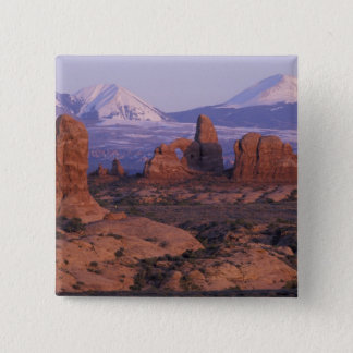 NA, USA, Utah, Arches National Park. Garden of 15 Cm Square Badge