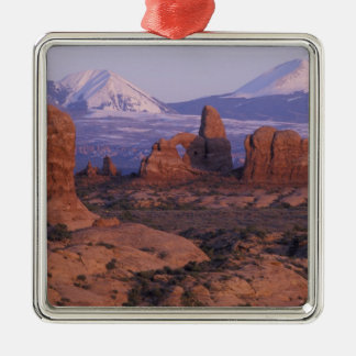 NA, USA, Utah, Arches National Park. Garden of Silver-Colored Square Decoration