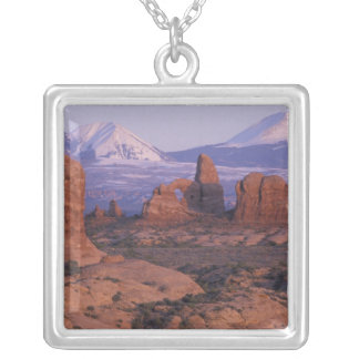 NA, USA, Utah, Arches National Park. Garden of Silver Plated Necklace