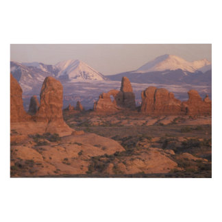 NA, USA, Utah, Arches National Park Wood Wall Art