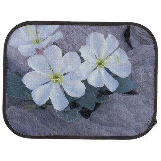 NA, USA, Utah, Arches NP, Evening primrose Car Mat