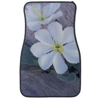 NA, USA, Utah, Arches NP, Evening primrose Floor Mat