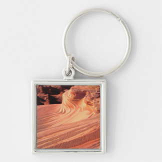 NA, USA, Utah, Vermillion Cliffs. Coyote Butte Silver-Colored Square Key Ring