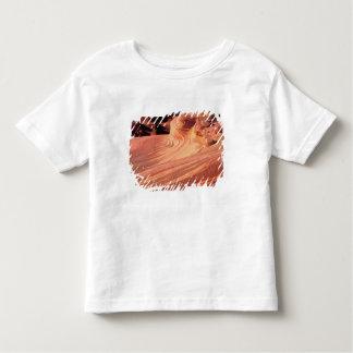 NA, USA, Utah, Vermillion Cliffs. Coyote Butte Tee Shirts