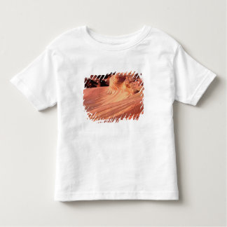 NA, USA, Utah, Vermillion Cliffs. Coyote Butte Toddler T-Shirt