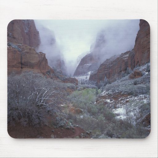 NA, USA, Utah, Zion NP, Spring snow storm, Mousepad