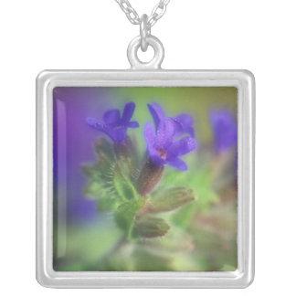 NA, USA, Washington, Eastern Washington. Wild Silver Plated Necklace