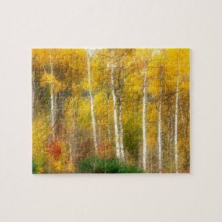 NA, USA, Washington, Fall Aspen Trees along Jigsaw Puzzle