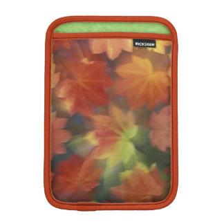 NA, USA, Washington, Issaquah, Vine maple iPad Mini Sleeve