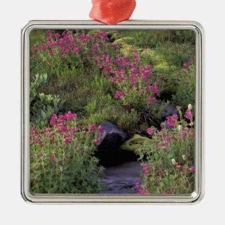 NA, USA, Washington, Mt. Rainier NP, Pink Christmas Ornament