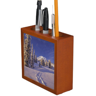 NA, USA, Washington, Mt. Rainier NP, Snowshoe Desk Organiser