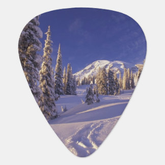 NA, USA, Washington, Mt. Rainier NP, Snowshoe Guitar Pick