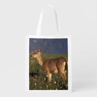 NA, USA, Washington, Olympic NP, Mule deer doe Reusable Grocery Bag